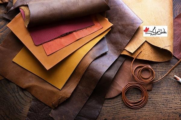 گروه بویایی چرمی (Leather)